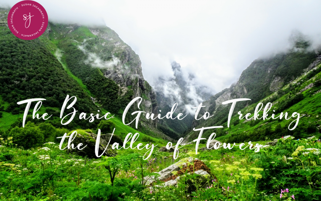 The Basic Guide to Trekking the Valley of Flowers