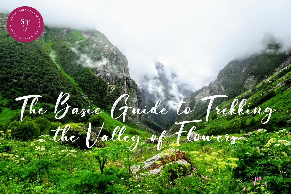 Basic Guide to trekking the Valley of Flowers