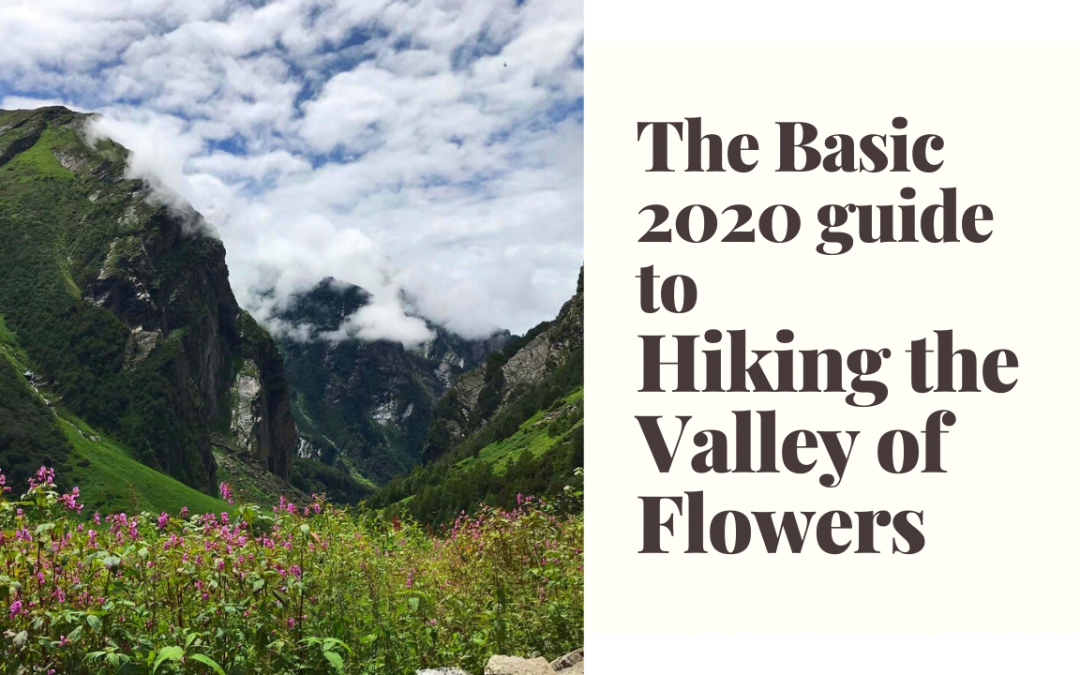 The Post Pandemic Guide to a Safe Trek to the Valley of Flowers