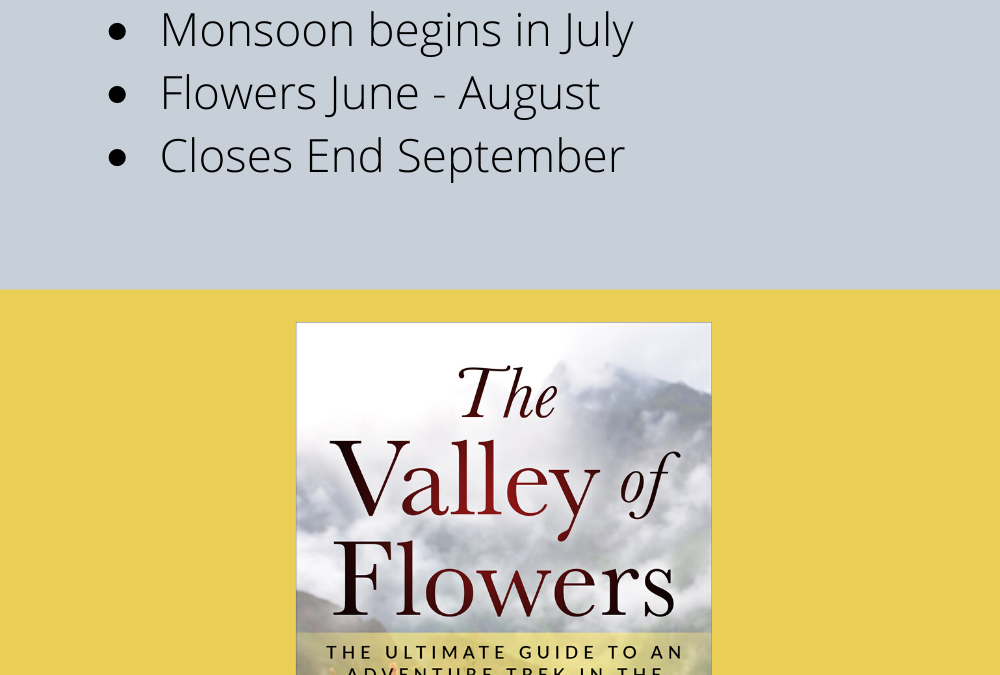 The Best Time to trek the Valley of Flowers
