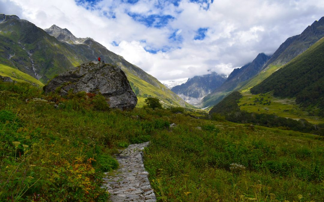 The Valley of Flowers – What to eat