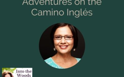 Adventures on the Camino Ingles