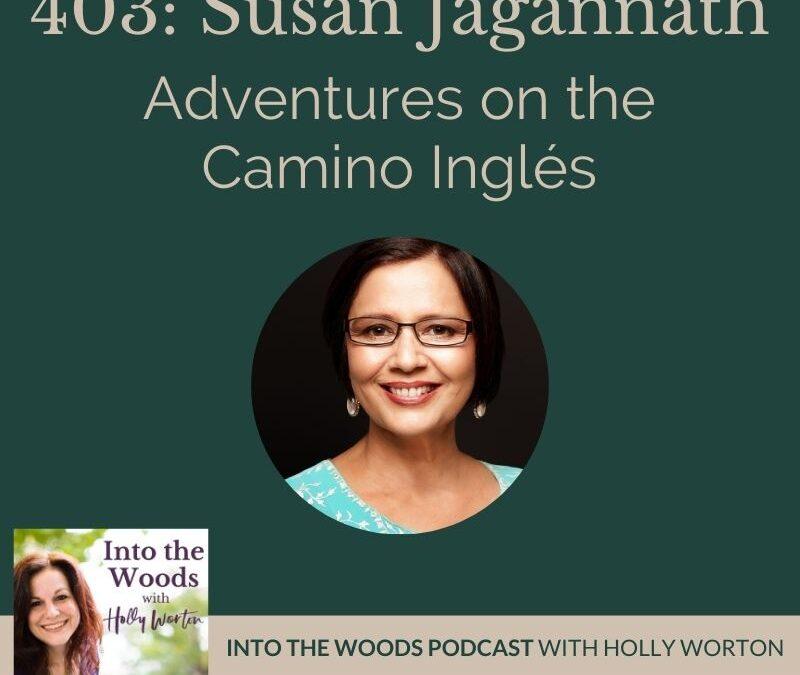 Adventures on the Camino Ingles